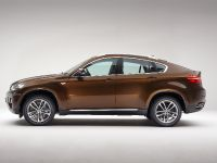 2013 BMW X6 Sports Activity Coupe