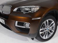 2013 BMW X6 Sports Activity Coupe, 9 of 11