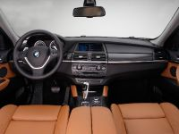 2013 BMW X6 Sports Activity Coupe, 10 of 11