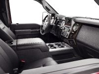 2013 Ford Super Duty Platinum, 19 of 34