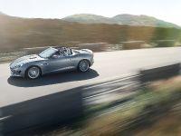 2013 Jaguar F-Type, 11 of 30