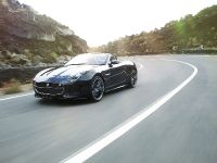 2013 Jaguar F-Type, 20 of 30