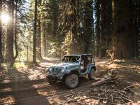 2013 Jeep Wrangler Rubicion 10th Anniversary Edition, 14 of 27