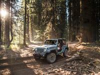 2013 Jeep Wrangler Rubicion 10th Anniversary Edition, 14 of 27