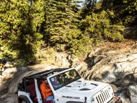 2013 Jeep Wrangler Rubicion 10th Anniversary Edition, 16 of 27