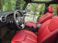 2013 Jeep Wrangler Rubicion 10th Anniversary Edition, 24 of 27