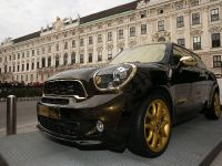 2013 MINI Paceman by Roberto Cavalli, 1 of 16