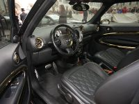 2013 MINI Paceman by Roberto Cavalli, 8 of 16