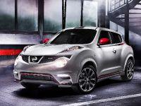 2013 Nissan Juke Nismo , 9 of 9