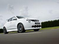 2013 Nissan Juke-R , 3 of 13