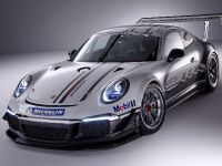 Porsche 911 GT3 Cup Race Car 2013, 2 of 7