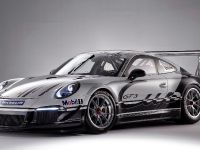 Porsche 911 GT3 Cup Race Car 2013, 3 of 7