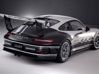 thumbnail image of 2013 Porsche 911 GT3 Cup Race Car