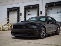 2013 ROUSH Ford Mustang RS, 12 of 17