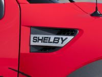 2013 Shelby Raptor , 6 of 10