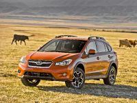 2013 Subaru XV Crosstrek , 10 of 26