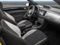 2013 Volkswagen Beetle GSR Limited Edition, 9 of 11