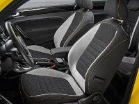 2013 Volkswagen Beetle GSR Limited Edition, 10 of 11