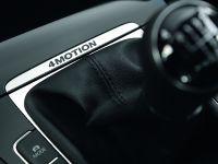 2013 Volkswagen Golf 4Motion, 9 of 16