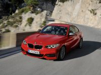 2014 BMW 2-Series Coupe, 4 of 42