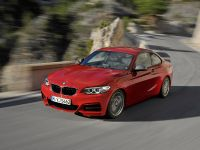2014 BMW 2-Series Coupe, 5 of 42
