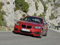 2014 BMW 2-Series Coupe, 7 of 42