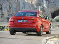 2014 BMW 2-Series Coupe, 8 of 42
