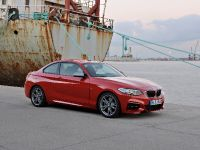 2014 BMW 2-Series Coupe, 10 of 42