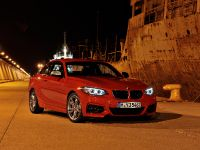 2014 BMW 2-Series Coupe, 12 of 42