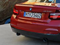 2014 BMW 2-Series Coupe, 14 of 42