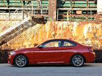 2014 BMW 2-Series Coupe, 17 of 42