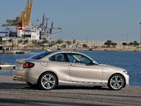 2014 BMW 2-Series Coupe, 19 of 42