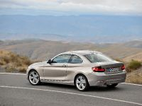 2014 BMW 2-Series Coupe, 20 of 42