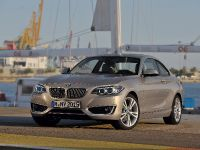2014 BMW 2-Series Coupe, 24 of 42