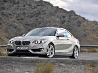 2014 BMW 2-Series Coupe, 26 of 42