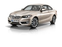 2014 BMW 2-Series Coupe, 27 of 42