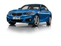 2014 BMW 2-Series Coupe, 29 of 42