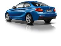 2014 BMW 2-Series Coupe, 30 of 42
