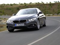2014 BMW 4-Series Coupe, 17 of 97