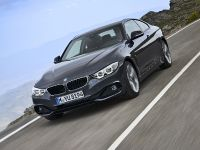 2014 BMW 4-Series Coupe, 25 of 97