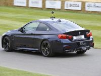 2014 BMW M4 Coupe Individual - Goodwood, 5 of 5