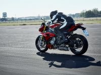 2014 BMW S 1000 R, 9 of 25