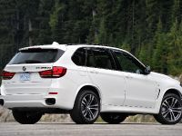 2014 BMW X5 M50d, 10 of 24