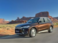 2014 BMW X5, 38 of 66