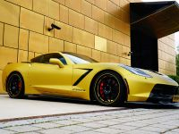2014 Chevrolet Corvette C7 Stingray, 9 of 12