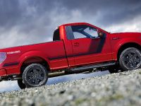 2014 Ford F-150 Tremor , 13 of 18