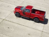 2014 Ford F-150 Tremor , 14 of 18