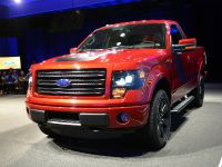 2014 Ford F-150 Tremor , 15 of 18