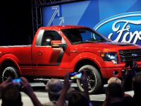 2014 Ford F-150 Tremor , 17 of 18