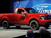 2014 Ford F-150 Tremor , 18 of 18